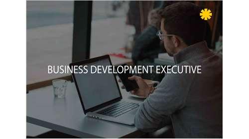 Business Development Executive full time